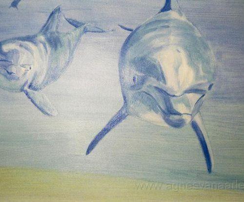 Dolfijnen op toilet