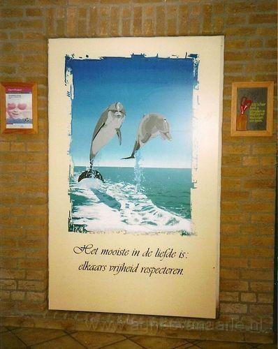 Dolfijnen in acryl